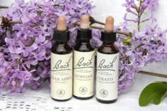 bach-bottles1